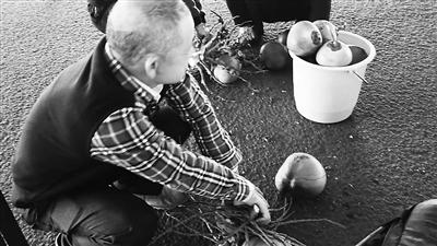 过年回家大家都带啥!大爷从海口打包30斤椰子想给家人尝尝