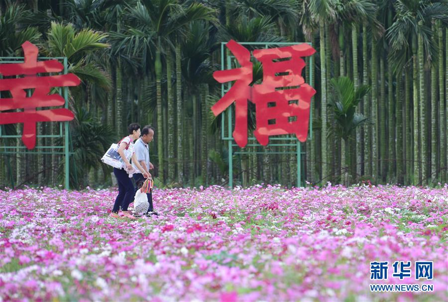 #(社会)(2)海南琼海:花海芬芳引游人
