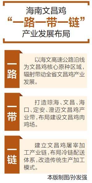 """生态养殖 文昌鸡""""舞""""出新寰宇"""
