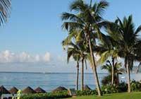 14家旅行社被退出旅游電子行程服務平臺