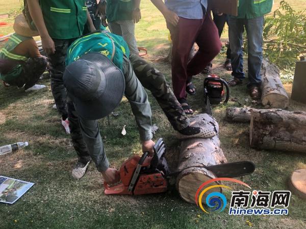 备战台风季 海口组织园林工人开展应急机械设备