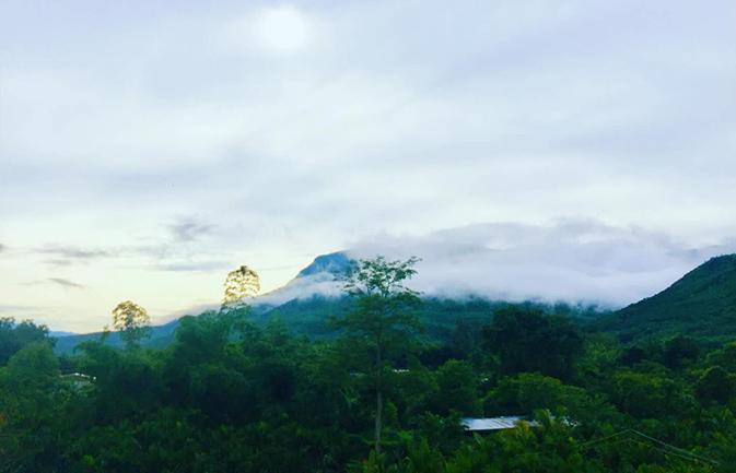 乐东风景醉游人 天然氧吧展现雨林魅力