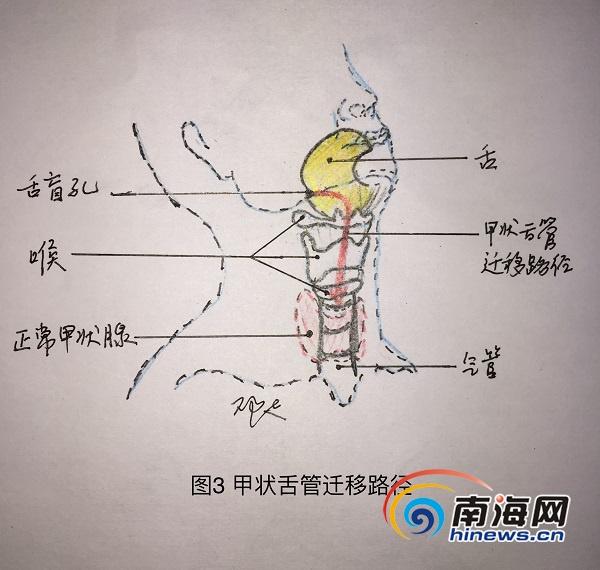 http://www.nxaz.net/qichexiaofei/17119.html