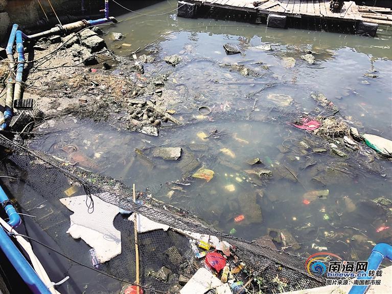 <b>整治人居环境黑榜 | 陵水新村码头:路边堤岸水里都是垃圾</b>