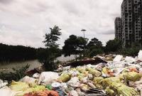 临高临城镇文澜江畔:垃圾成堆谁来清理?