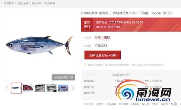 """<b>三亚一条百斤""""鱼王""""竞拍价超9万元!两千人网上围观</b>"""