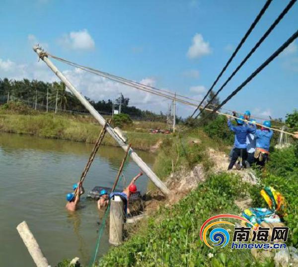 图:市供电局员工抢修线路.png
