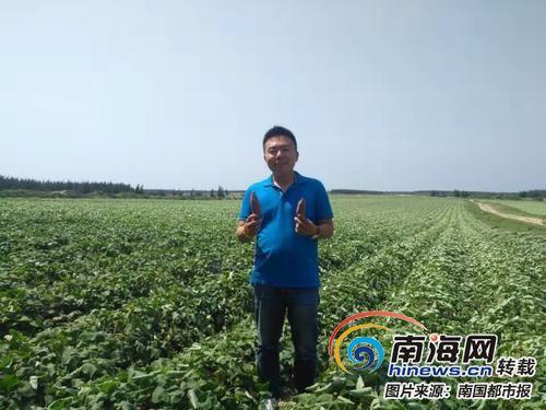 文昌返乡大学生郭问:年销5000万元 一个小地瓜