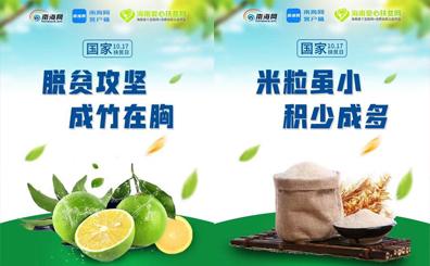 """创意海报来了!海南爱心扶贫网一周年 """"网红""""农产品送祝福"""