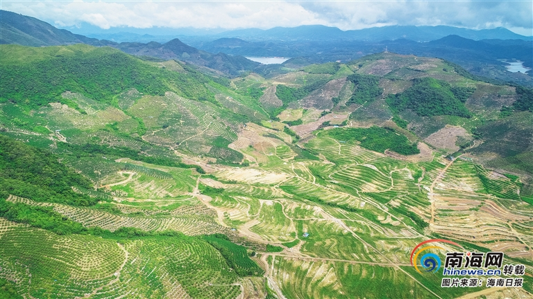 国家南繁生物育种专区加快建设