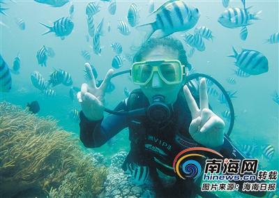 游客投诉及时跟踪反馈 海南打造诚信旅游环境