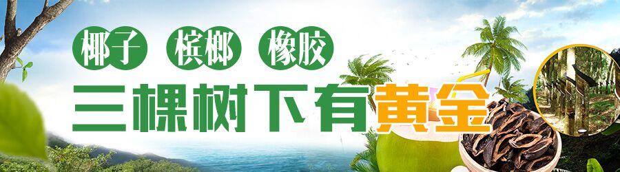 """国内外专家为海南如何推动热带作物产业融合发展建言献策 利用""""科技+""""壮大特色产业"""