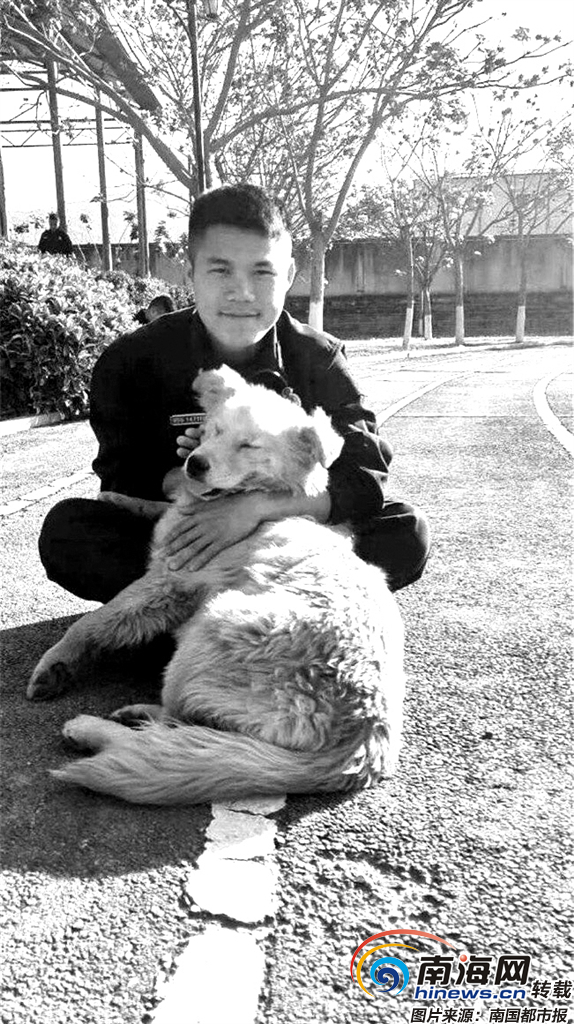 感动海南 | 唐博英走了,他养的小狗代替他陪伴家人