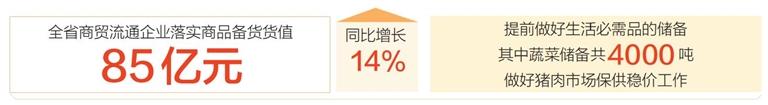 海南组织6万余种商品供应春节市场