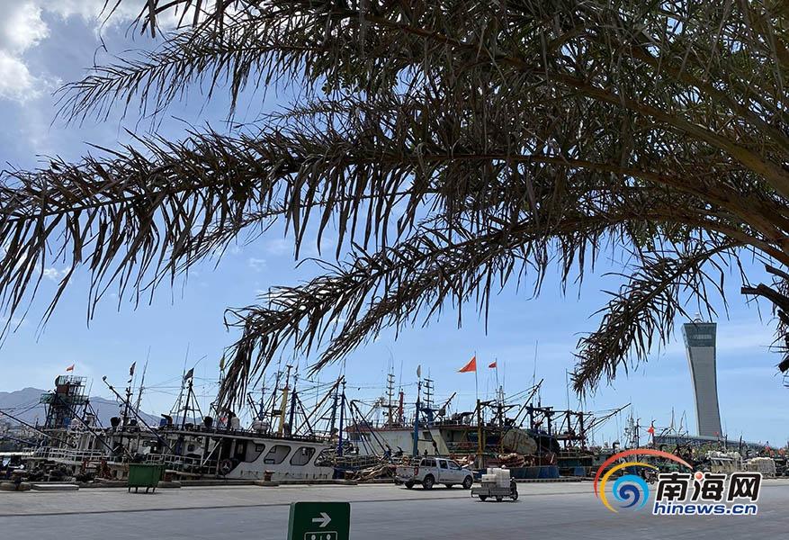 原创高清组图 三亚崖州中心渔港有序复工渔船可正常出港作业