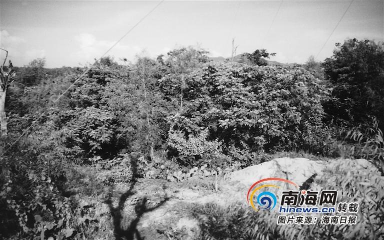 纪念海南解放70周年 | 梅山抗日烽火燃