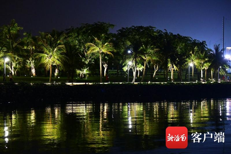 真正有效的减肥方法夜色迷人的海口湾