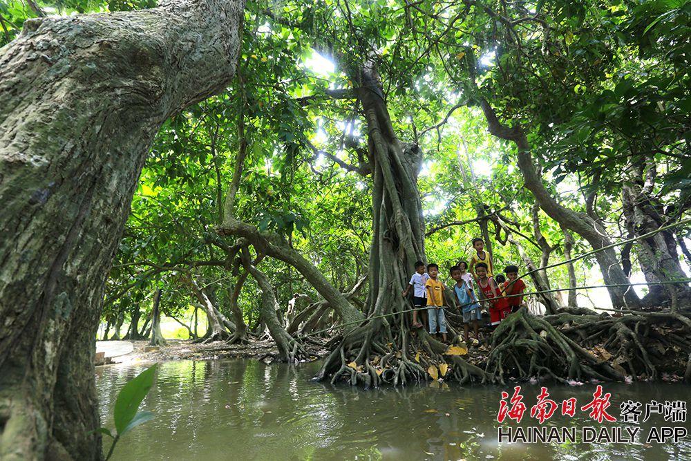 组图 | 海南儋州七里村:颜值高 游客多