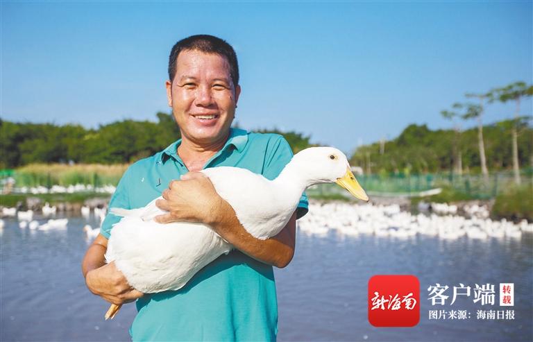三亚海棠区湾坡村做强做大湾坡鸭品牌发展村集体经济助村民增收-三亚新闻网-南海网