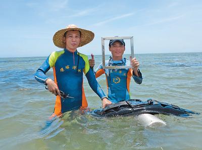 央媒持续关注海南生态环境保护和生态文明建设工作