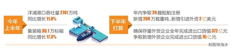 洋浦:加速打造区域国际集装箱枢纽港