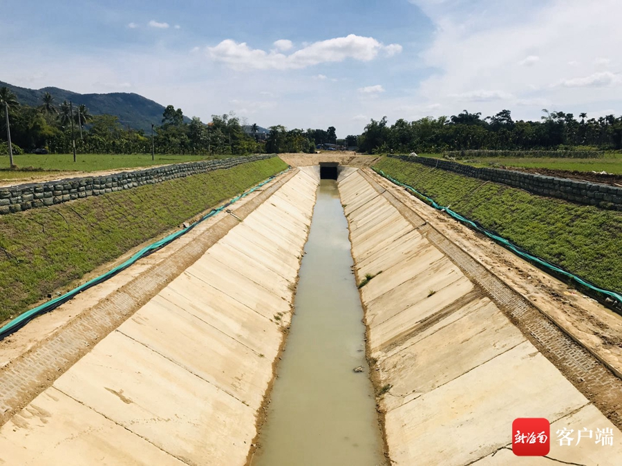 海南红岭灌区总干二标试验段初步完工 土石笼袋护坡技术生态植生效果显著