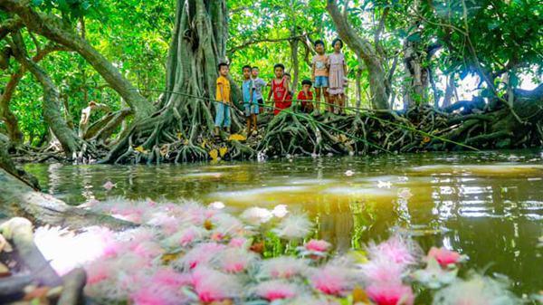 海南地理 | 儋州:千年古村玉蕊花香