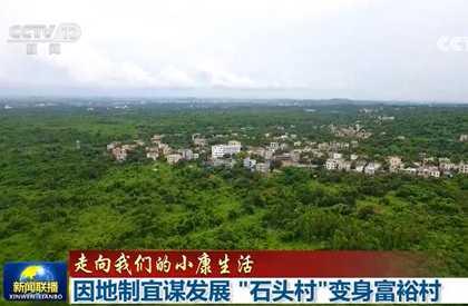 央视《新闻联播》聚焦海口施茶村:因地制宜谋发展 '石头村'变身富裕村