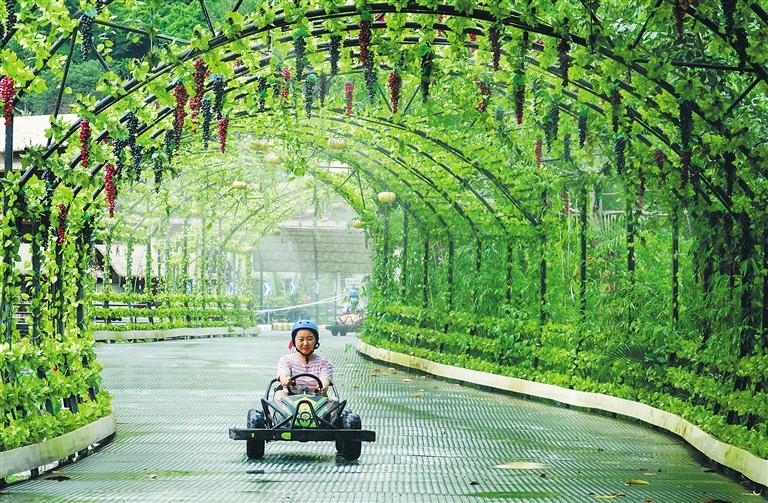 保亭安身自身优势资源高质量推进全域旅游新发展