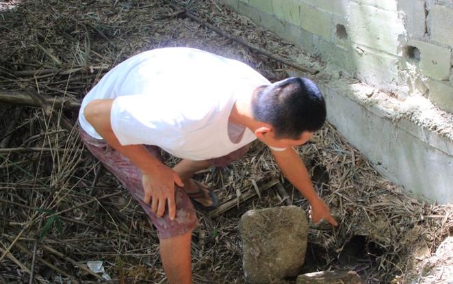未批先建、无证排污!万宁南林医院环境违法被罚14.3万元