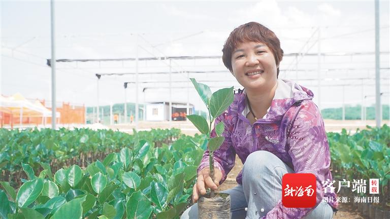 海垦龙江农场公司加快产学研协同发展 推动传统
