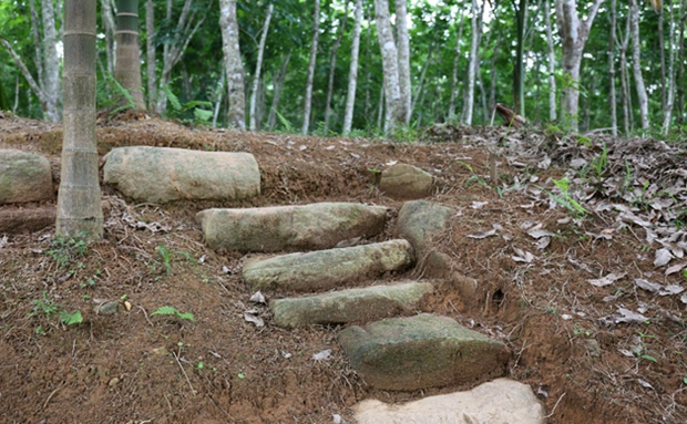 海南日记丨徐则臣:考古爱好者终于来到发掘现场