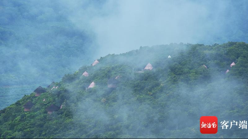 亚龙湾鸟巢度假村雨后云雾缭绕 宛如仙境