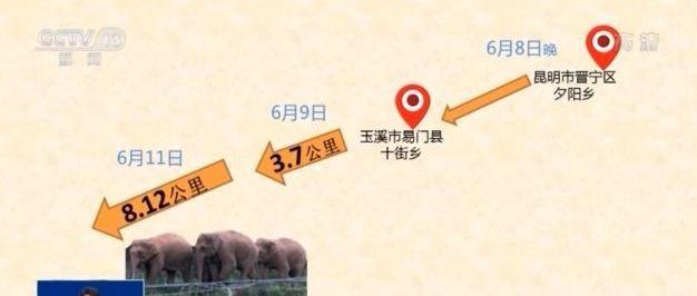 daxiang1.jpg?x-oss-process=style/w10