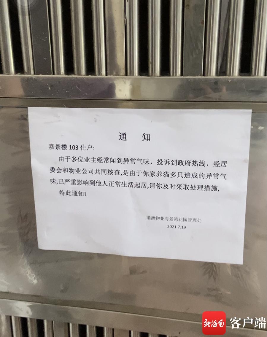 """住宅变""""养猫场""""!海口海景湾花园小区有人租房养猫扰民遭投诉"""