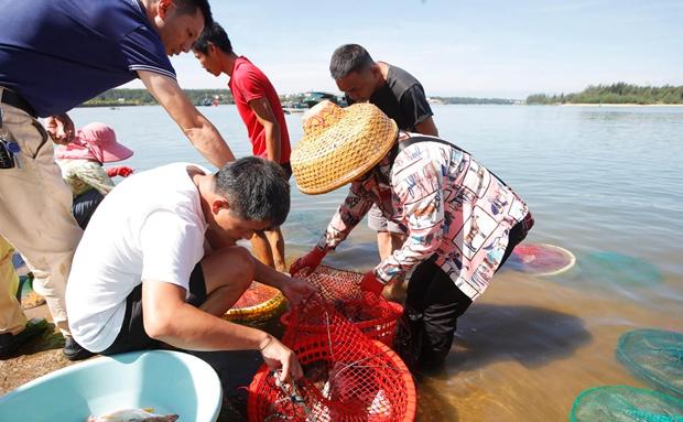 """原创组图丨澄迈马村渔港:来尝开渔后的第一波""""鲜味""""啦"""
