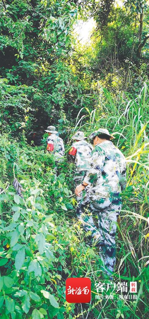 """体验海南霸王岭护林员的一天:茫茫林海,他们用钩刀劈出""""上班路"""""""