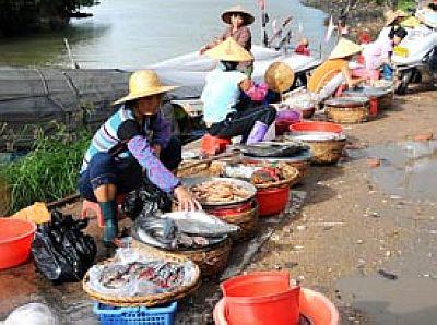 海南霍乱疫情搅冷海口海鲜消费 市场冷清