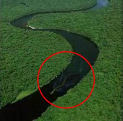 神秘巨蛇现身马来西亚 长百英尺1头7鼻孔(组图)
