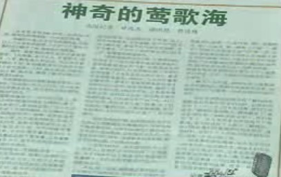 莺歌海成为中国海洋石油发祥地始末