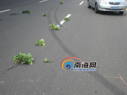 37路公交车撞倒横穿马路行人 6旬老太头部出血 新闻中心 ...