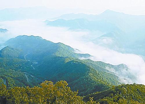 魅力琼中(一) 森林王国 三江之源 林深水丰