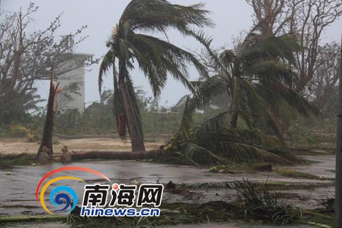 """今年第二号强台风""""康森""""袭击西沙群岛永兴岛,中心风力12级."""