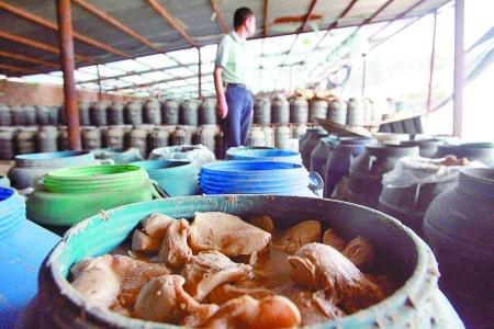 郑州查获两万斤用工业盐腌泡毒蘑菇