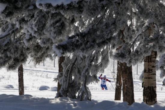 (大冬会)(16)越野滑雪——激情雪原