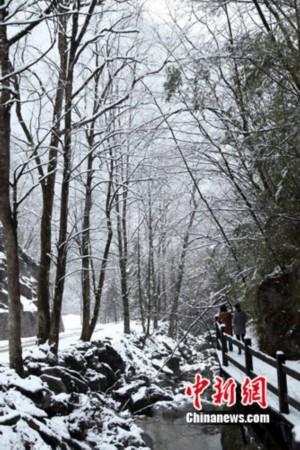 图为雪后的神龙架景区.刘良伟 摄高清图片