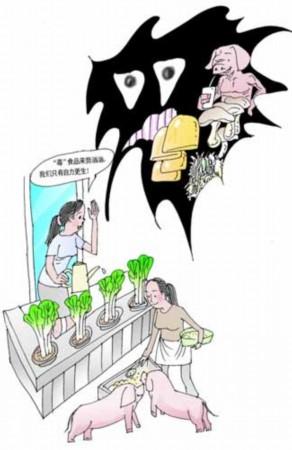 城市农夫联合养猪种菜蒸馒头 保餐桌安全(图)
