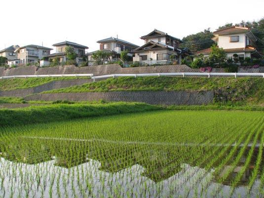 组图:实拍日本农村的房子