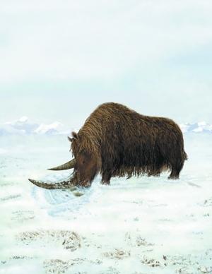 发现了一个上新世哺乳动物化石组合,其中包含了已知最原始的披毛犀.