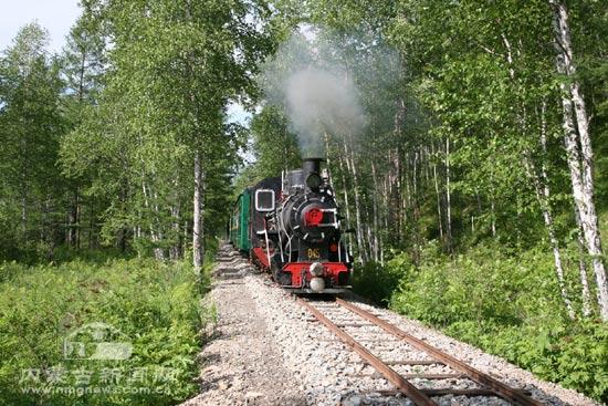 小火车 带你游览大兴安岭林区的美景